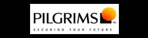 Pilgrims Africa Limited